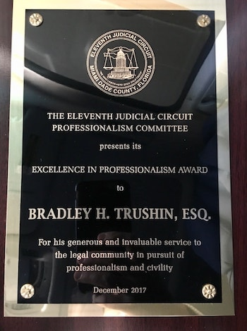 Excellence in Professionalism Award